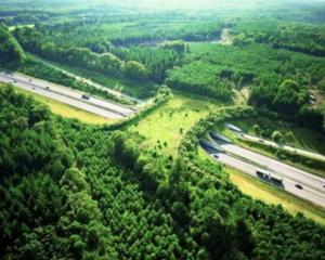 This wildlife bridge (ecoduct) provides a safe crossing path for wildlife amidst the danger of highways.